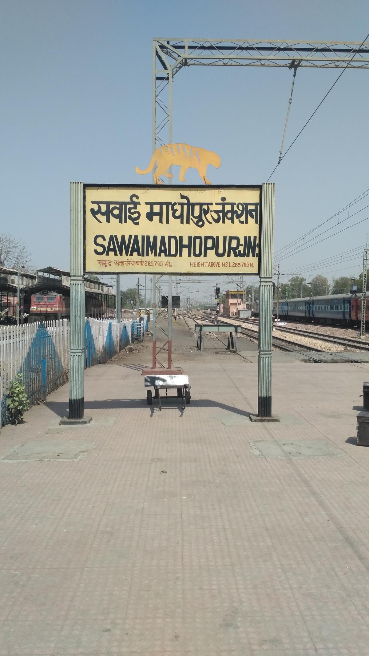 Digital Marketing Course in Sawai Madhopur